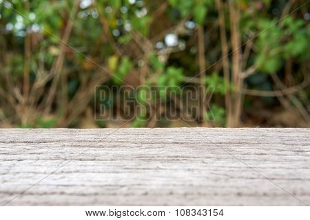 Cement Bench In Wood Like Surface With Blur Tree Background