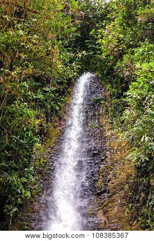 Tropical Waterfall In Amazonia Jungle