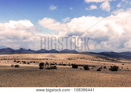 National Park Chimborazo In South America