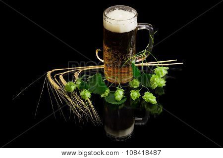 Lager beer with foam in beer glassware branch of hops with leaves and cones several ears of barley on a dark background with reflection. Isolation. poster