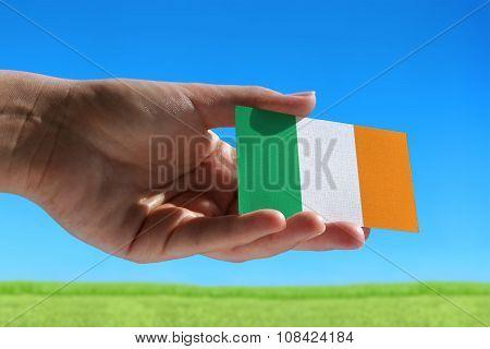 Small Flag Of Ireland