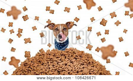 hungry bulldog dog behind a big mound or cluster of food food raining all overisolated on white background poster