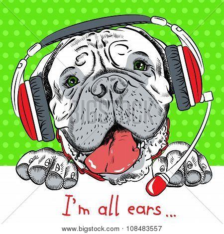 vector dog Bullmastiff with phone headset