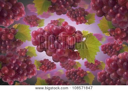 new sweet grappe background, fruit, grape, tasty