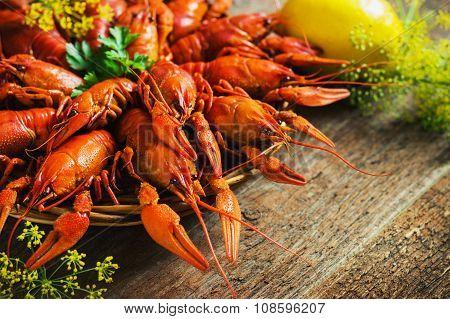 crawfish on wooden background