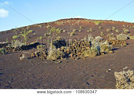 vulcanic landscape under the extincted vulcano under blue sky
