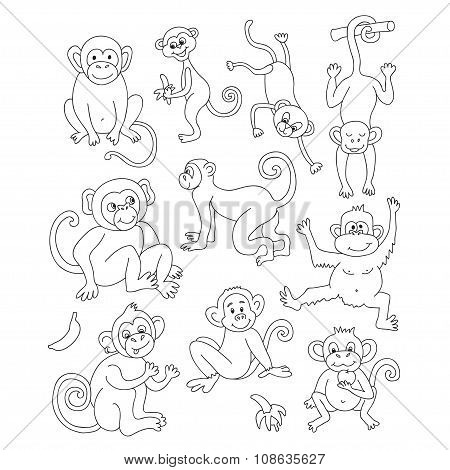 Vector funny monkeys, illustration coloring page of happy monkeys for children