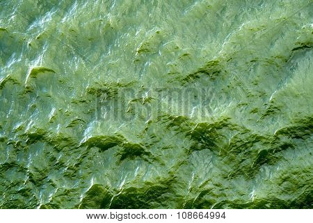 Green Water With Sun Reflections Background Texture