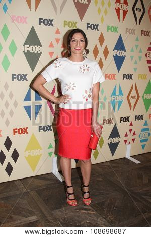 LOS ANGELES - AUG 6:  Chelsea Peretti at the FOX TCA Summer 2015 All-Star Party at the Soho House on August 6, 2015 in West Hollywood, CA