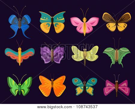 Colorful butterflies flat style vector collection. Vector butterfly set. Butterfly colorful different types. Butterfly  silhouette isolated on dark background. Butterfly blue, butterfly colorful