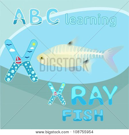 X is for X ray fish vector Letter X font Antarctic animal X-ray fish Transparent body & visible skel