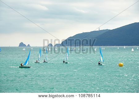 Busan, Korea - September 19, 2015: Dinghy Yachts On A Suyeong Bay