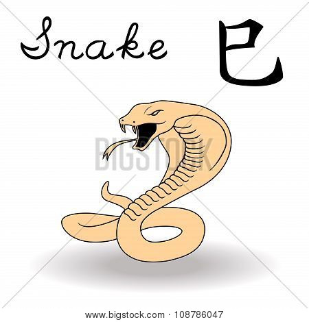 Eastern Zodiac Sign Snake