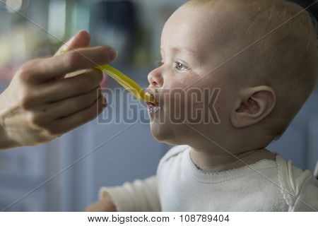 Feeding Baby From The Spoon