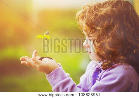 Little Girl Holding Green Young Plant In Spring Outdoors. Ecology Concept.