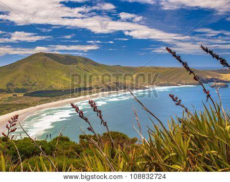 Coastal View Otago