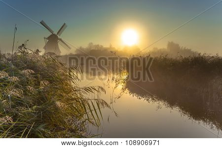 Windmill In Dewy Marshland