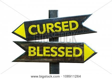 Cursed - Blessed signpost isolated on white background
