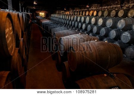Wooden casks of different sizes