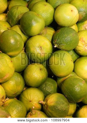 bergamia citrus or green bergamot for sale to the vegatable and fruit italian market poster