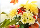 Beautiful autumn bouquet with chrysanthemums flowers, on windowsill poster