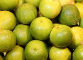 many bergamia citrus or green bergamot for sale to the greengrocery poster