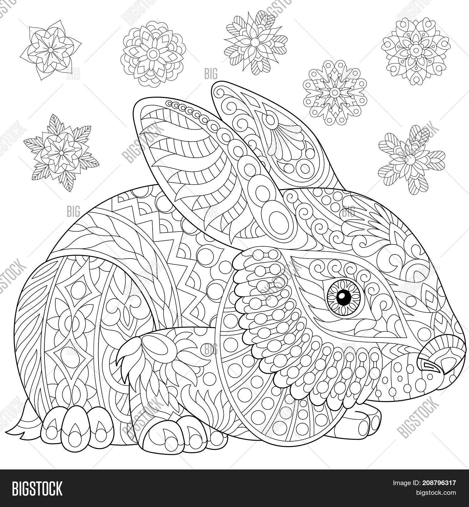 Coloring Page Rabbit ( Image & Photo (Free Trial) | Bigstock
