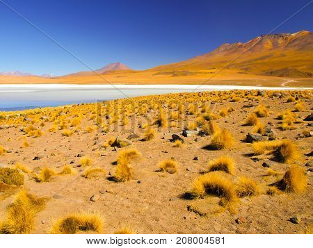 Desolate desert and mountainous landscape of southern Altiplano with lagoon, Andes, Bolivia.