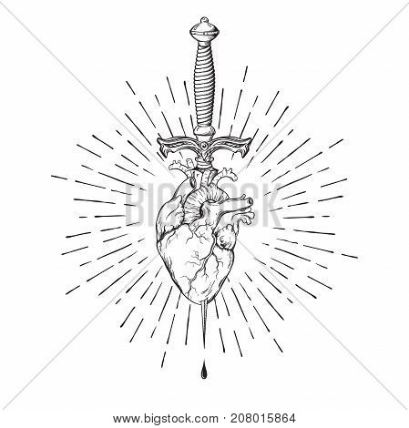 Human heart pierced with ritual dagger in rays of light isolated on white background hand drawn vector illustration. Black work flash tattoo or print design.