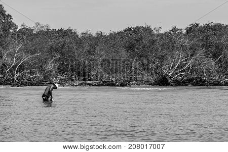 CARTAGENA COLOMBIA - JUNE 6 2015: Man on the outskirts of cartagena getting sustenance for his family fishing in the mangrove