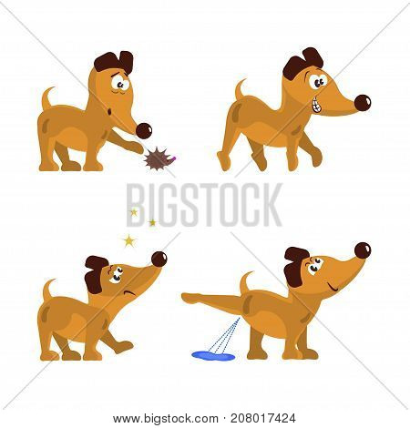 Cute little dogs set in different poses. Collection isolated of  funny puppys in cartoon style. Vector illustration eps 10