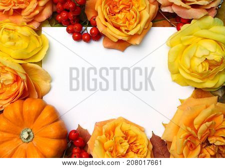 Autumn frame. Maple, oak leaves, orange pumpkin, roses, rowan berries and empty white paper card. Fall and Thanksgiving concept. Floral composition, styled stock flat lay photography. Top view.