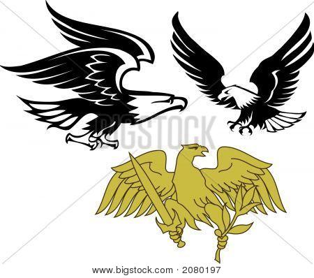 eagle vector group vector  photo free trial  bigstock
