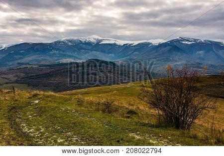 Path Through Hillsides In Autumn