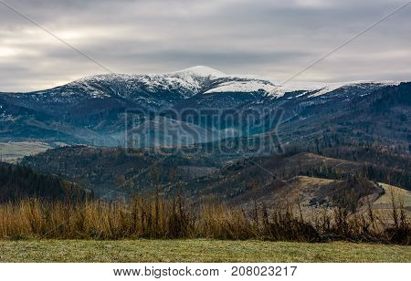 Grassy Meadow In Mountains With Snowy Peaks