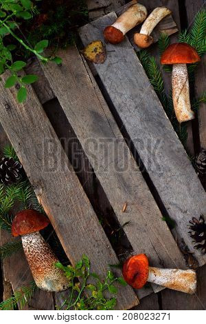 Composition Of Red Cap Boletus In Bowl On Wooden Background. Frame From Edible Wild Mushrooms. Copy