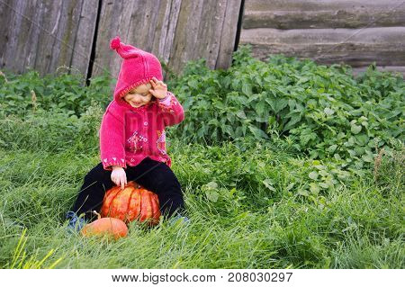 A Small Serious Child In A Purple Dwarf Suit Sits On The Big Pumpkin And Looks Down. The Symbol And