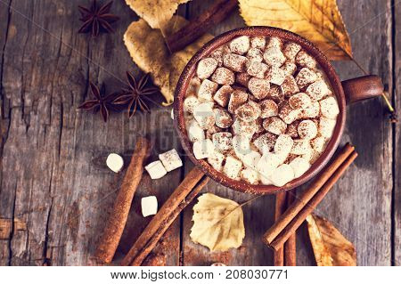 Cocoa With Marshmallow