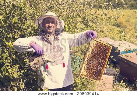 A man works in an apiary collecting bee honey