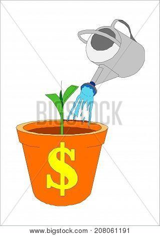 A bucket of watering pot in which the dollar is growing