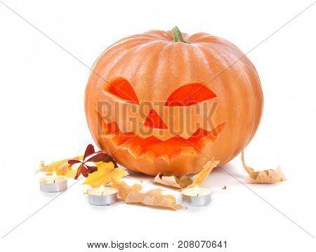 Halloween pumpkin head jack lantern isolated on white background. Carved Halloween Pumpkin closeup, holidays art design, celebration