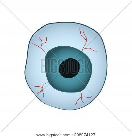 Cartoon image of the eyeball. Illustration for Halloween. Vector illustration. Hand drawing.
