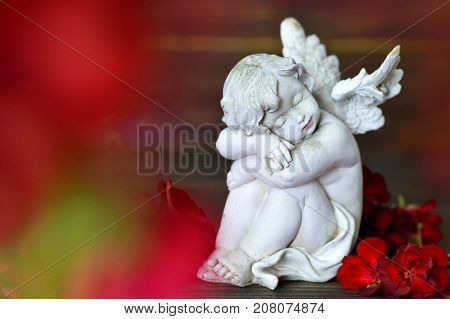 Little guardian angel sleeping on red flower petals