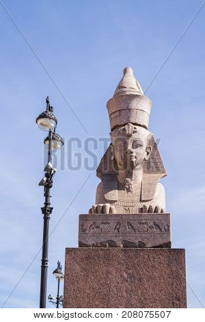 The Famous Sphinx From Neva River In St. Petersburg.
