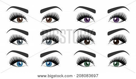 Color of human eyes. Set of open female eyes with beautiful long eyelashes and stylish eyebrows isolated on white background. Fashion makeup. Vector illustration