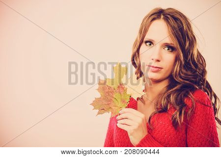 Pretty Autumnal Girl With Maple Leaves In Hand