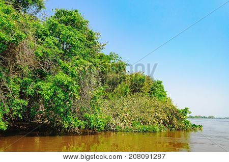 Landscape With The River And Green Vegetation Of Trees And Plants On The River Banks