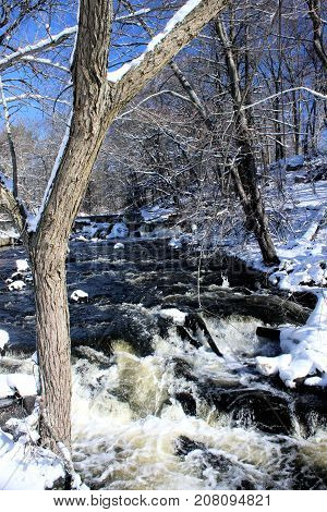 Fast flowing stream tumbling over snow covered rocks on a sunny winter day.