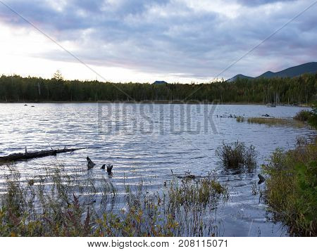 Stump Pond in Baxter State Park Maine with fall foliage in the foreground pine trees in the background and overcast sky at sunset above.