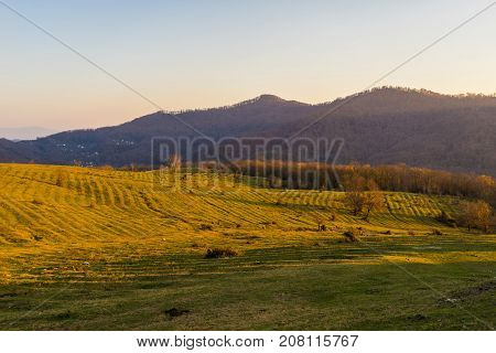large empty field with autumn hills in the background